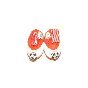 Ajax pantoffels bal